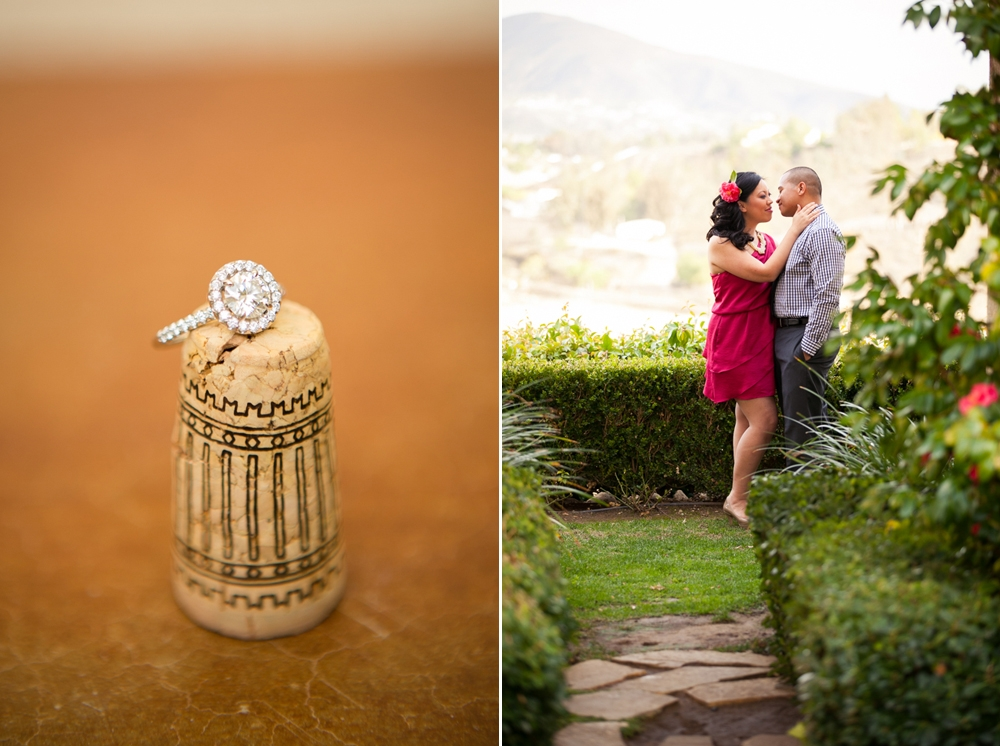 Southcoast-Winery-Engagement-Photography-14