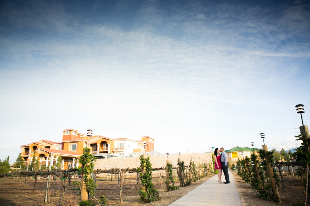 Southcoast-Winery-Engagement-Photography-21
