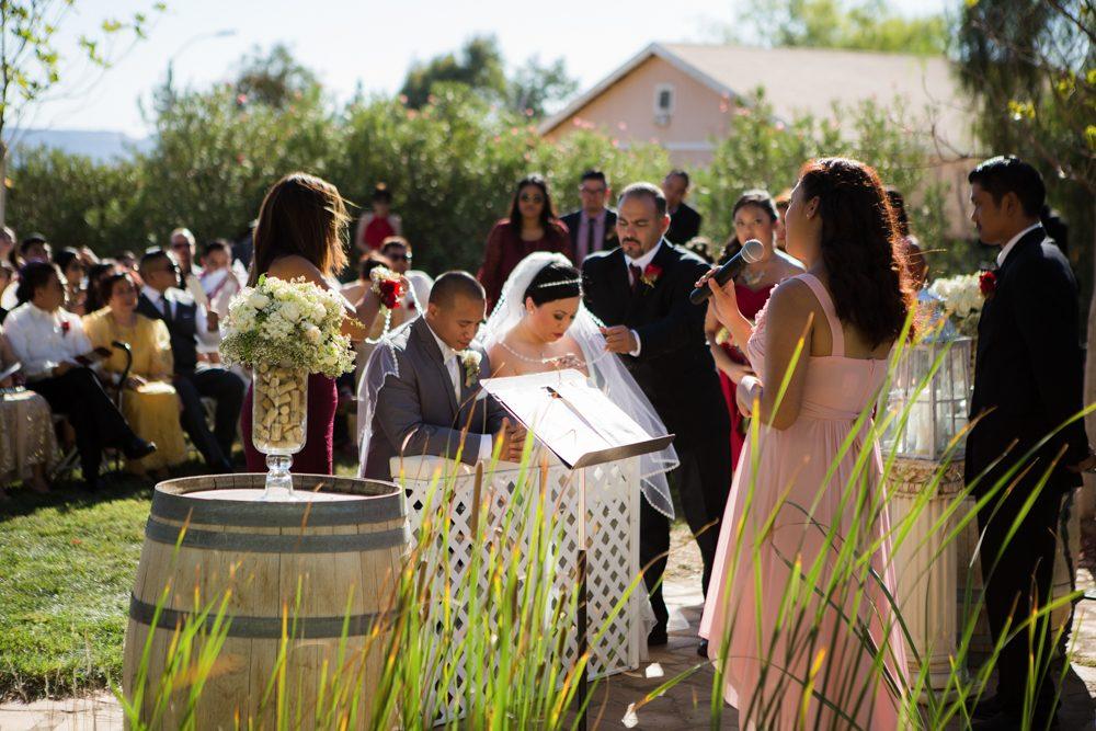 Bella-Gardens-Estate-Wedding-Photography-30